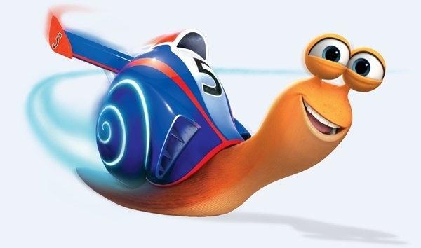 Snail Racing at Stafford Cricket Club