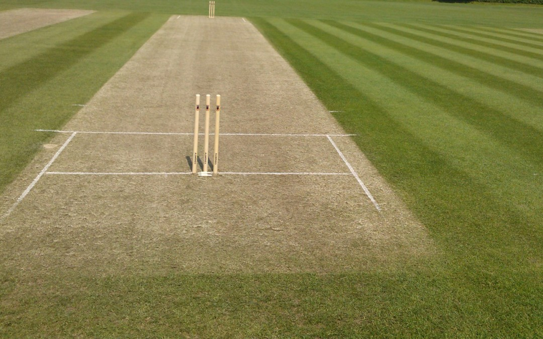 Stafford Cricket Club Preview